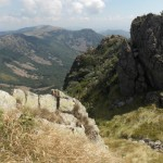 Camminare con Lama ed Alpaca sull`Alta Via Ligure