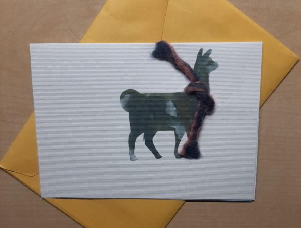 Buono-regalo-per-passeggiata-con-lama-alpaca