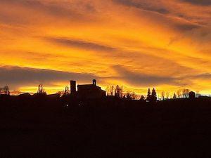 cavatore al tramonto paesaggio del Monferrato